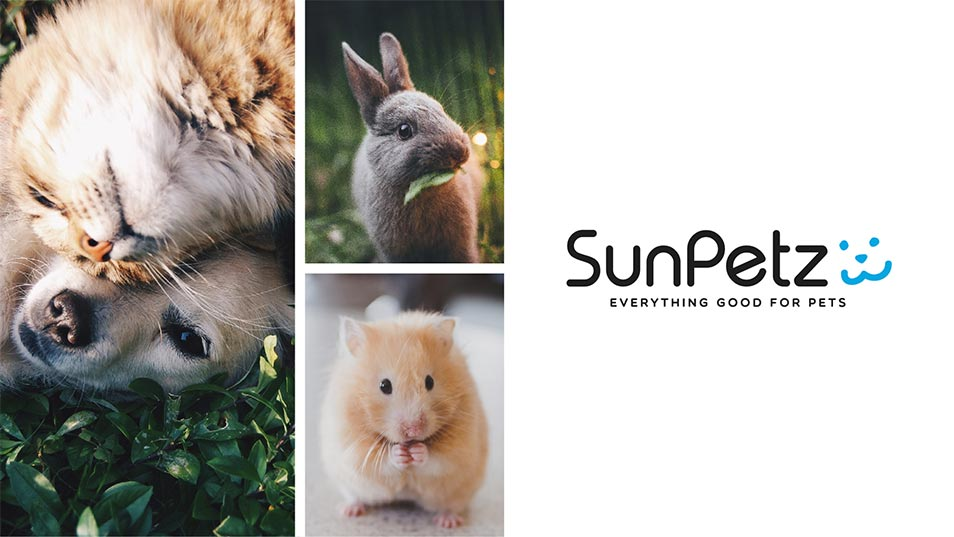 SunPetz - Brand Logo Design, Business Card Design